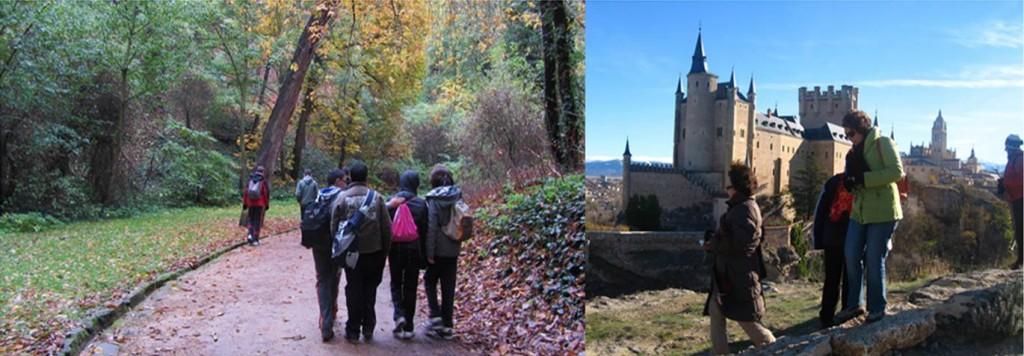 Bosques de Segovia 3