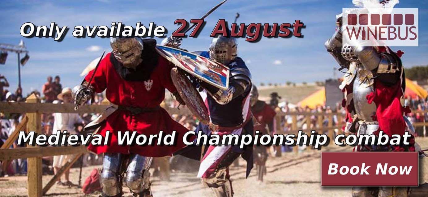 Medieval World championship combat
