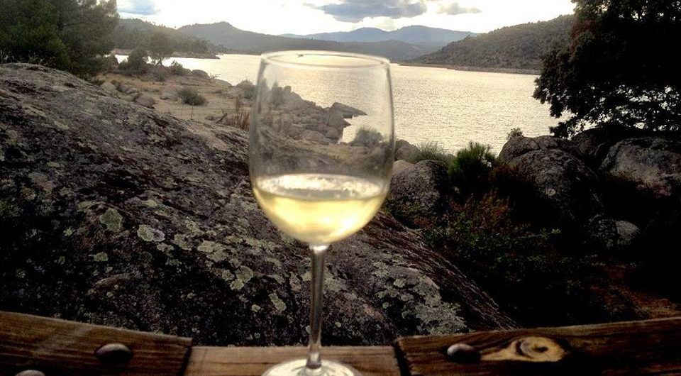 A beautiful landscape with a glass of wine in hand