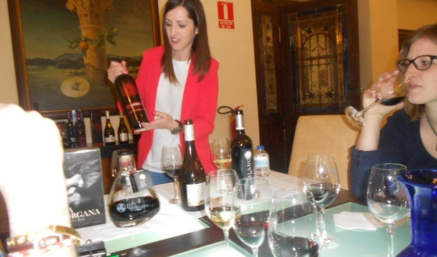 Visiting wineries near Madrid