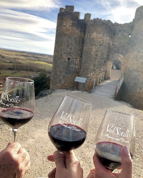 Castillos con vino 5