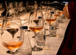 cata de vinos virtual