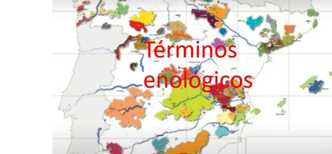 Términos enológicos 5